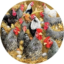 Family Chickens & Chicks 1000 pc Shaped Puzzle