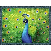 Beautiful Peacock Diamond Painting