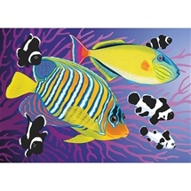 Colourful Fish Diamond Painting